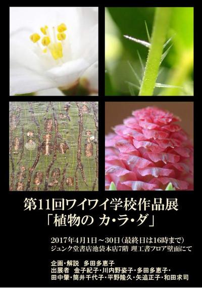23117_photo_art_poster